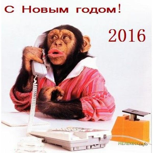 Поздравления с нг 2016 прикольные