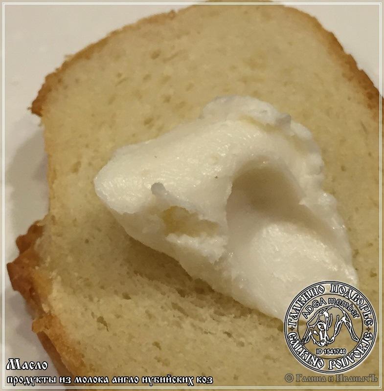 Масло из молока англо-нубийских коз